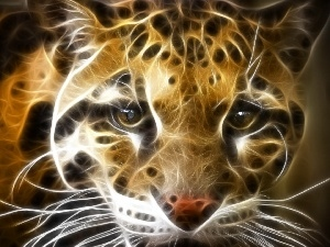 Leopards, Vectorial