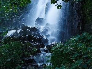 VEGETATION, waterfall, Green