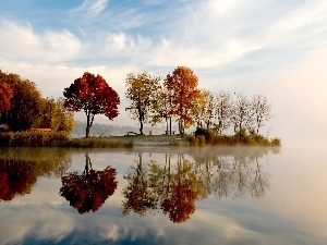 autumn, trees, viewes, lake