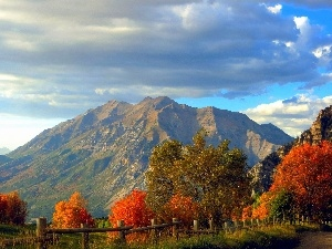 Way, Rocky, viewes, autumn, trees, Mountains