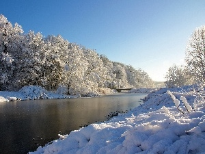 snow, trees, viewes, River