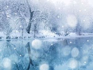 viewes, water, snow, trees, winter