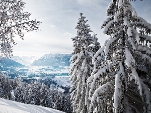 winter, trees, viewes, Mountains