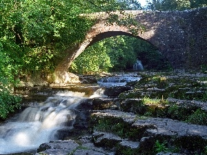 bridge, River, Yorkshire, England, green, Cascades